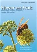 Flower and Fruit : Morphology, Ontogeny, Phylogeny, Function and Ecology - Peter Leins