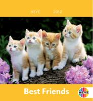 Katzen Mini Best Friends 2012