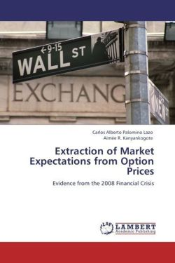 Extraction of Market Expectations from Option Prices - Palomino Lazo, Carlos Alberto / Kanyankogote, Aimée R.