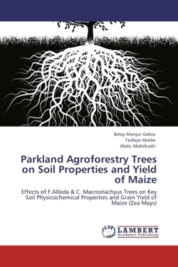 Parkland Agroforestry Trees on Soil Properties and Yield of Maize - Gebru, Belay Manjur / Abebe, Tesfaye / Abdelkadir, Abdu