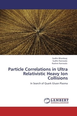 Particle Correlations in Ultra Relativistic Heavy Ion Collisions