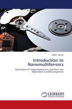 Introduction to Nanomultiferroics