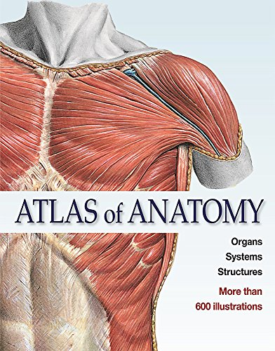 Atlas of Anatomy: The Human Body Described in 13 Systems - EDITORIAL TEAM SOBOTTA