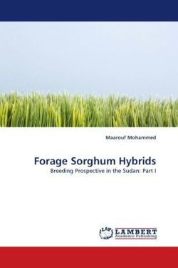 Forage Sorghum Hybrids - Mohammed, Maarouf
