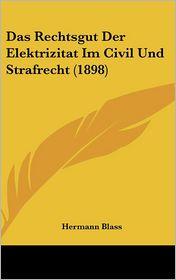 Das Rechtsgut Der Elektrizitat Im Civil Und Strafrecht (1898) - Hermann Blass
