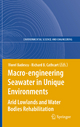 Macro-engineering Seawater in Unique Environments - Viorel Badescu; Richard Cathcart