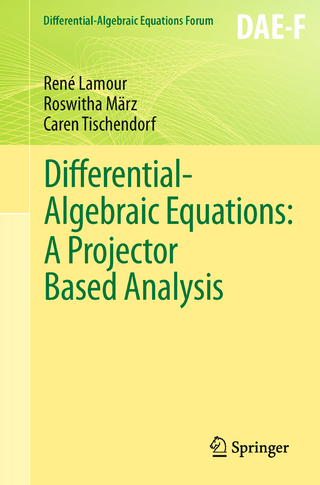 Differential-Algebraic Equations: A Projector Based Analysis - René Lamour; Roswitha März; Caren Tischendorf