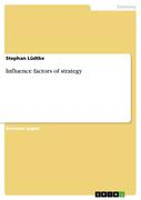 Lüdtke, Stephan: Influence factors of strategy