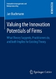 Valuing the Innovation Potentials of Firms
