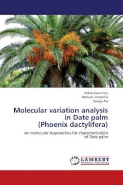 Molecular variation analysis in Date palm  (Phoenix dactylifera)