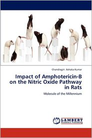 Impact of Amphotericin-B on the Nitric Oxide Pathway in Rats