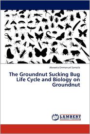The Groundnut Sucking Bug Life Cycle and Biology on Groundnut - Samaila Akeweta Emmanuel