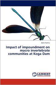 Impact of Impoundment on Macro Invertebrate Communities at Koga Dam