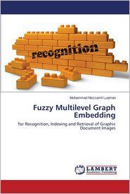 Fuzzy Multilevel Graph Embedding