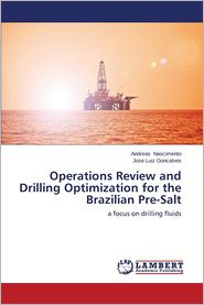Operations Review and Drilling Optimization for the Brazilian Pre-Salt