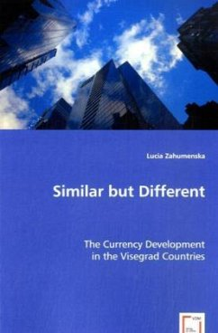 Similar but Different - Zahumenska, Lucia
