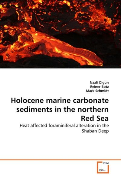 Holocene marine carbonate sediments in the northern Red Sea - Nazli Olgun