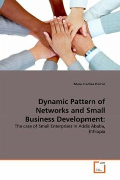Dynamic Pattern of Networks and Small Business Development - Demie, Muse Gadisa