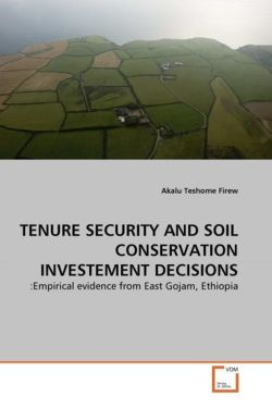 TENURE SECURITY AND SOIL CONSERVATION INVESTEMENT DECISIONS