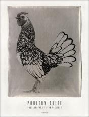 Poultry Suite - Ralph Gibson, Bryan Hunt