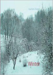 Winter - Joachim Ziegler