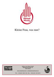 Kleine Frau, was nun?: Single Songbook
