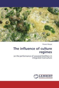 The influence of culture regimes