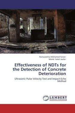 Effectiveness of NDTs for the Detection of Concrete Deterioration