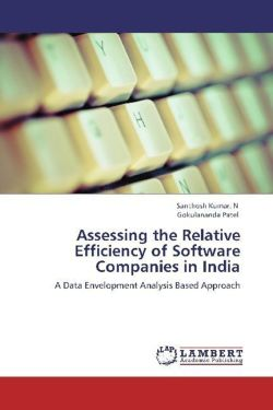 Assessing the Relative Efficiency of Software Companies in India