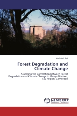 Forest Degradation and Climate Change