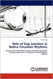 Role Of Gap Junction In Retina Circadian Rhythms - Yan Zhang