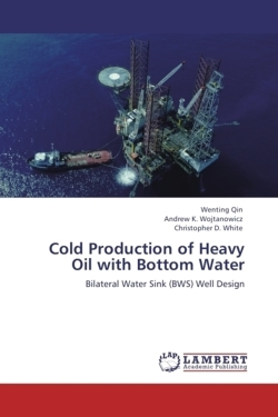 Cold Production of Heavy Oil with Bottom Water: Bilateral Water Sink (BWS) Well Design