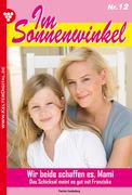 Patricia Vandenberg: Im Sonnenwinkel 12 - Familienroman