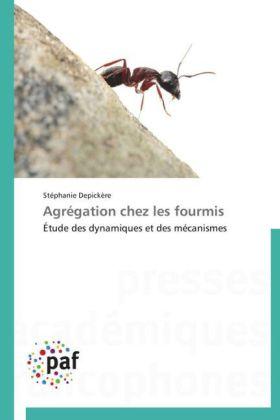 Agrégation chez les fourmis - Étude des dynamiques et des mécanismes - Depickère, Stéphanie
