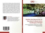 Fopah Lele, Armand: Gestion des Ressources en Eau dans le Bassin de la Sandougou-Sénégal