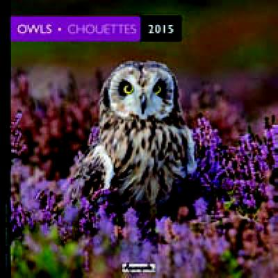 Owls 2015. Chouettes