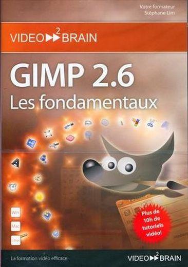 GIMP 2.6 : les fondamentaux plus de 10h de tutoriels video ! - Lim, Stephane