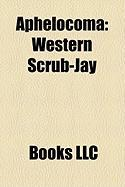 Aphelocoma: Western Scrub-Jay