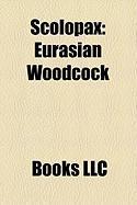 Scolopax: Eurasian Woodcock, American Woodcock, Bukidnon Woodcock, Moluccan Woodcock, Amami Woodcock, Dusky Woodcock, Sulawesi W