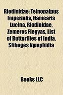 Riodinidae: Teinopalpus Imperialis