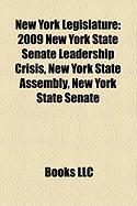 New York Legislature: 2009 New York State Senate Leadership Crisis, New York State Assembly, New York State Senate