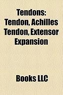 Tendons: Tendon, Achilles Tendon, Extensor Expansion