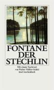 Der Stechlin (insel taschenbuch)