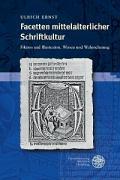 Facetten mittelalterlicher Schriftkultur: Fiktion und Illustration. Wissen und Wahrnehmung (Beihefte zum Euphorion)