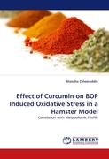 Effect of Curcumin on BOP Induced Oxidative Stress in a Hamster Model
