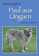 Paul aus Ungarn: Ein großartiger Tierheimhund