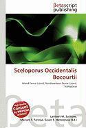 Sceloporus Occidentalis Bocourtii