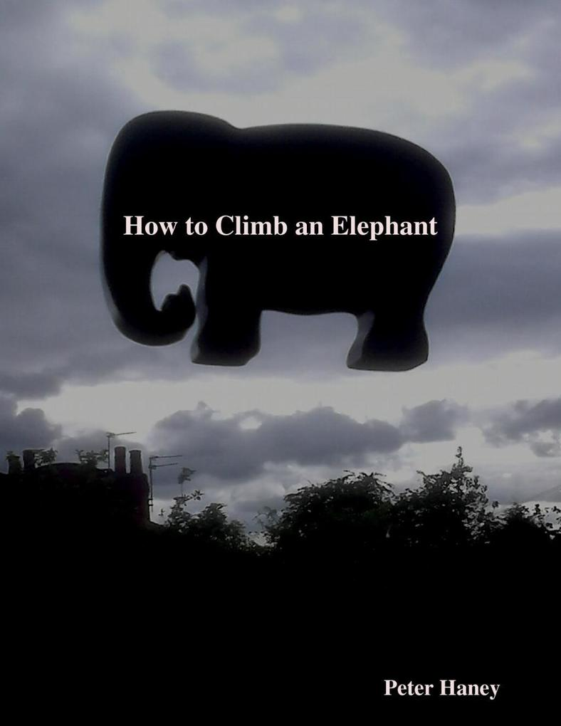 How to Climb an Elephant als eBook Download von Peter Haney - Peter Haney